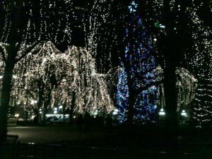 ricepark1