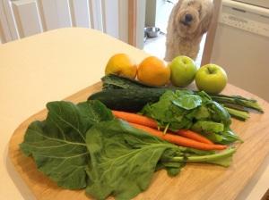 Fruit_Veggies_30