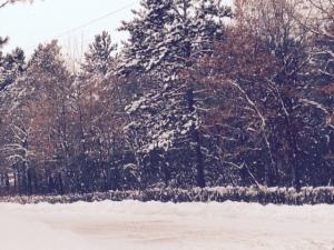 Up_North_Snow
